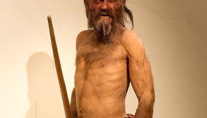 Tocino de cabra, lo último que comió Otzi, el 'hombre de hielo'