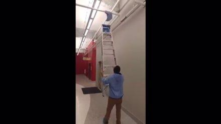 La forma más estúpida de usar una escalera de mano (YOUTUBE/ENDER WIGGIN)