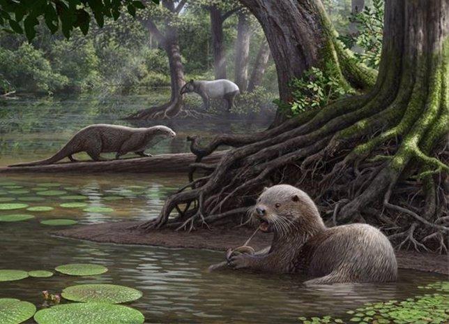 Resultado de imagen para Encuentran fósiles de una nutria gigante en China