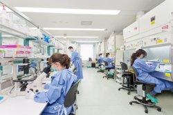 El PSOE exige explicaciones al Gobierno por la precarización de los contratos de 10.000 jóvenes investigadores