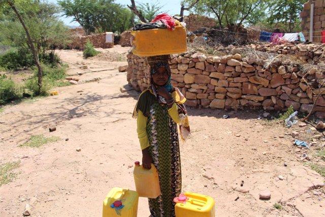 Aisha recoge leña todos los días en Yemen