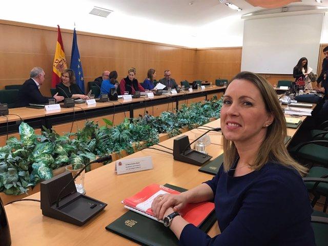 La Secretaria General De La Consejería De Presidencia, María Robles