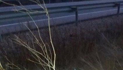 Muere un motorista en un accidente de tráfico en la N-122 en Bulbuente (Zaragoza)