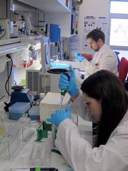 Laboratorio del IBFG.