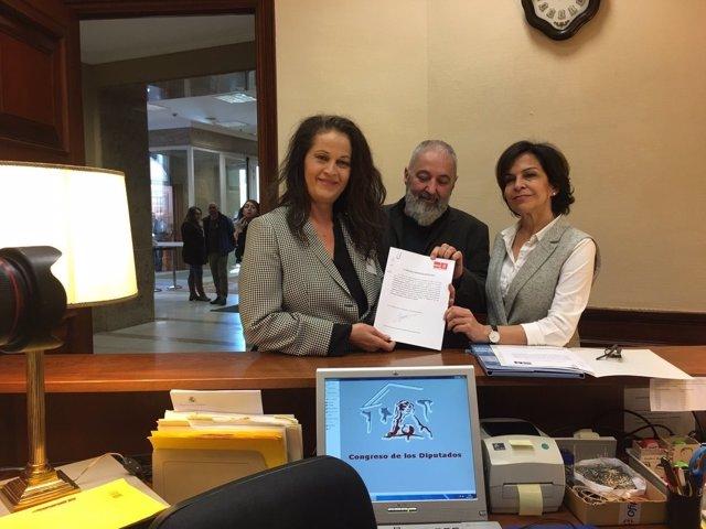 PSOE registra una iniciativa sobre transexuales
