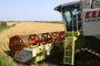 Foto: Junta de Extremadura y Feader destinan 20 millones de euros en ayudas para primera instalación de jóvenes agricultores