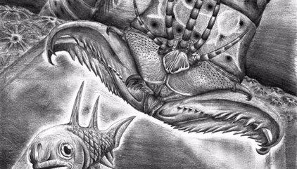 Un espantoso gusano gigante con mandíbulas, identificado en un museo