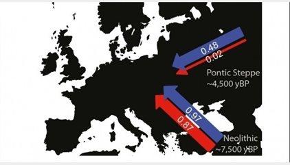 Hombres de la estepa cambiaron la ascendencia europea hace 5.000 años