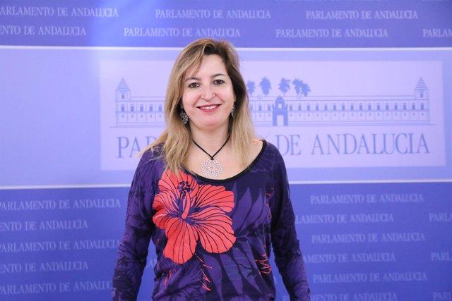 La presidenta del grupo parlamentario Podemos Andalucía, Carmen Lizárraga