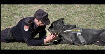 La Policía Nacional se suma a la iniciativa para promover la declaración...