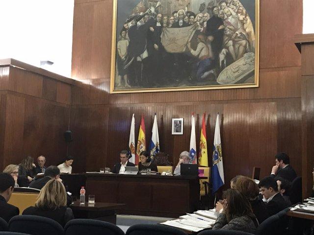 Pleno del Ayuntamiento de Santander, febrero 2017