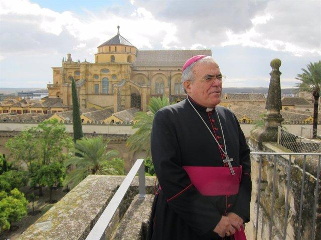 El obispo de Córdoba, Demetrio Fernández, con la Catedral al fondo