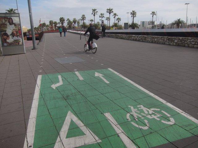 Carril bici en el paseo de Colón - Colom de Barcelona