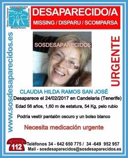 Cartel de la mujer desaparecida