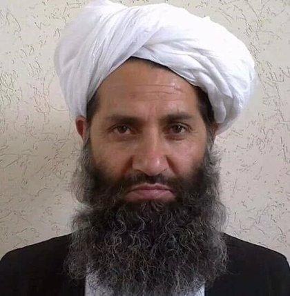 El líder de los talibán en Afganistán pide plantar más árboles
