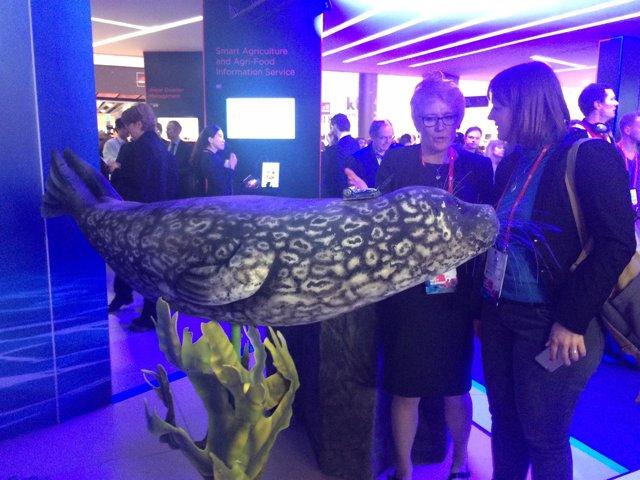 Aisla Hall muestra a una asistente el chip en el mamífero