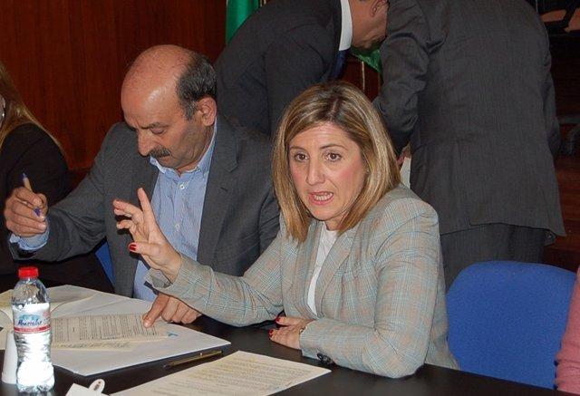 Irene García (PSOE), presidenta de la Diputación de Cádiz
