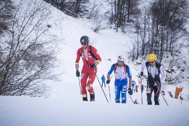 Kilian Jornet en la Carrera Vertical del Mundial de esquí de montaña