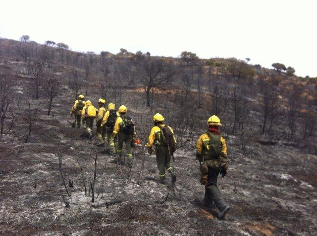 Incendio Belmontejo