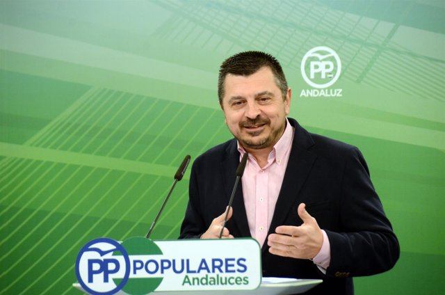 El vicesecretario de Coordinación del PP-A, Toni Martín, en rueda de prensa