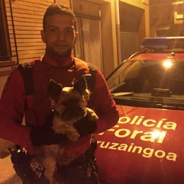 La Policía Foral encuentra un perro robado en Funes