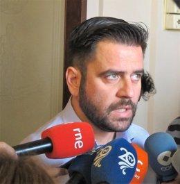 El portavoz del PSOE en el Ayuntamiento de Cádiz, Fran González
