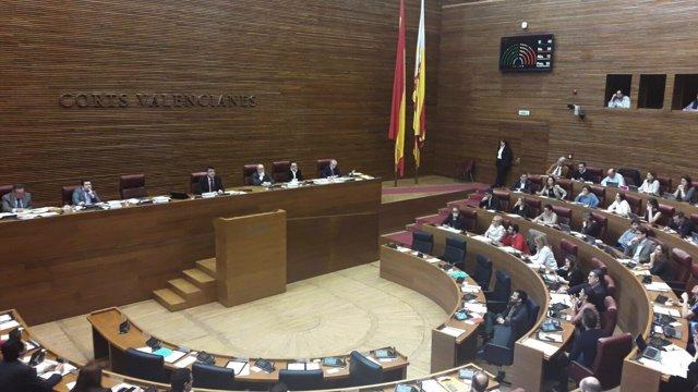 Votación sobre la Ley Cotino en el pleno