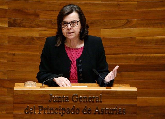 Consejera de Desarrollo Rural y Recursos Naturales, María Jesús Álvarez