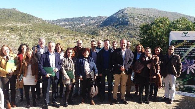Grupo de trabajo para iniciar el II Plan de Desarrollo Sostenible