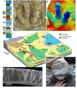 Recreación del hábitat donde vivían los dinosaurios del Maestrazgo