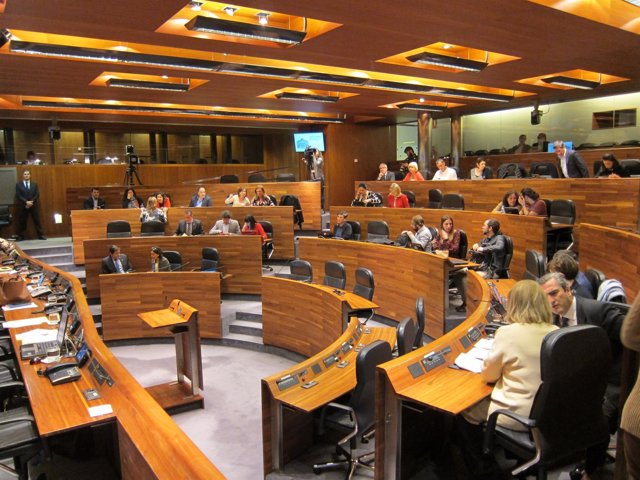Pleno de la Junta General del Principado de Asturias