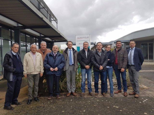 Grupo de Contacto de la Fresa de España, Italia, Francia.