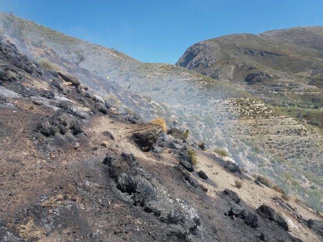 Incendio en Güéjar-Sierra (Granada)