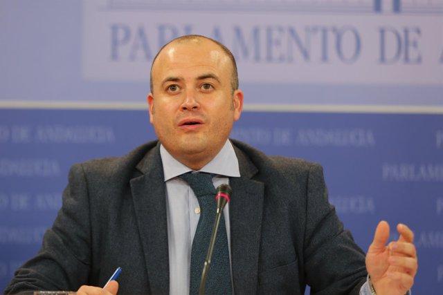 El presidente de la comisión de investigación sobre la formación, Julio Díaz