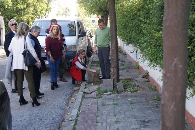 Baches y acera en mal estado de una calle de Heliópolis en Sevilla