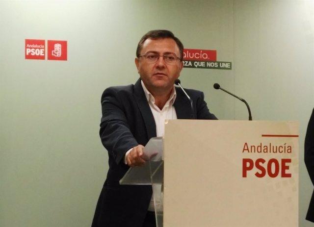 El secretario general del grupo socialista en el Congreso, Miguel Ángel Heredia