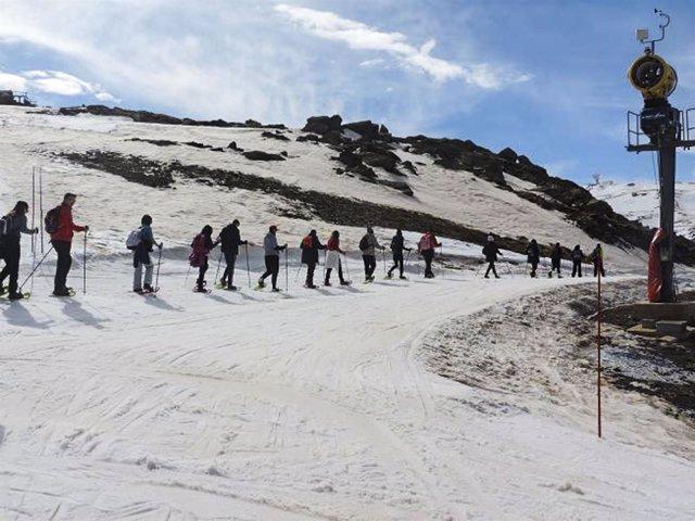 Los participantes en la actividad han practicado raquetas de nieve y esquí.