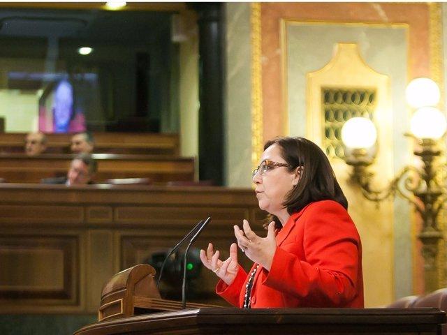 María Jesús Moro, del PP, en el Congreso