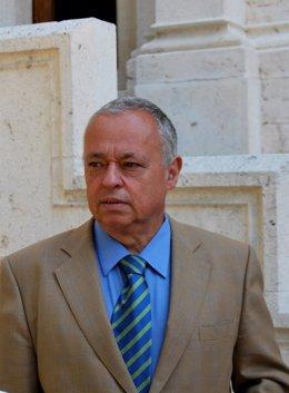 Gonzalo Santonja, en el MEH.