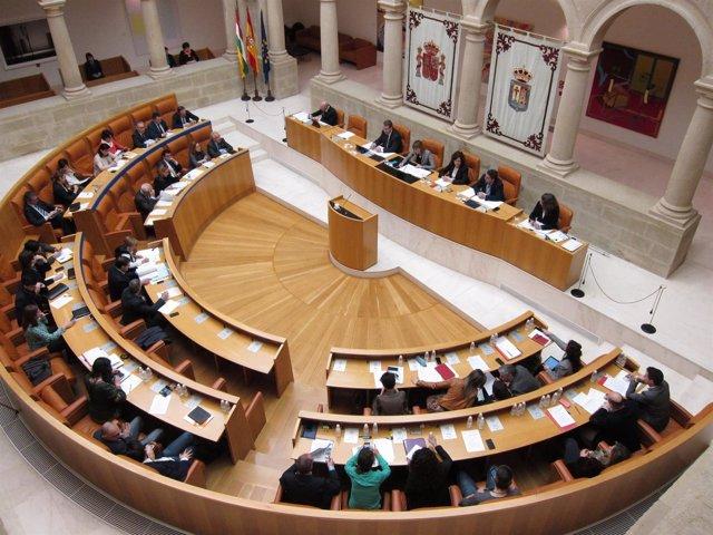 Pleno del Parlamento de La Rioja