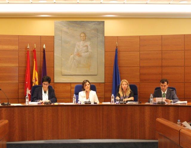Pleno de Pozuelo de Madrid