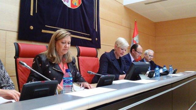 Valladolid. Del Olmo en la Comisión de Economía y Hacienda