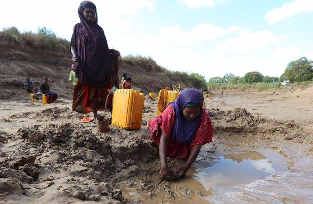 Mujeres recogen agua en Somalia