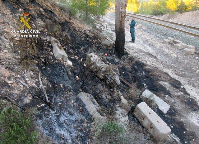 Imagen de la zona incendiada en Calasparra