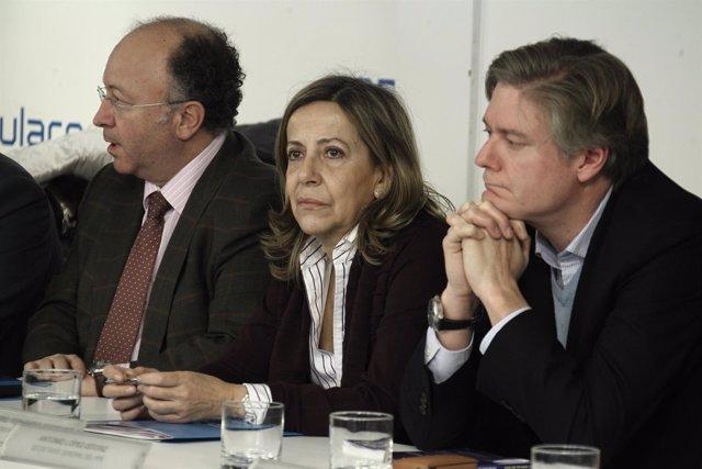 Comité ejecutivo, PP, Génova, Carmen Navarro, tesorera PP