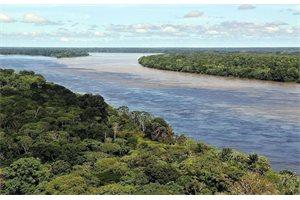 El Río Amazonas existe desde hace nueve millones de años, según investigadores