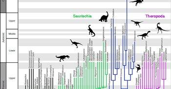 Se agitan las raices del árbol genealógico de los dinosaurios
