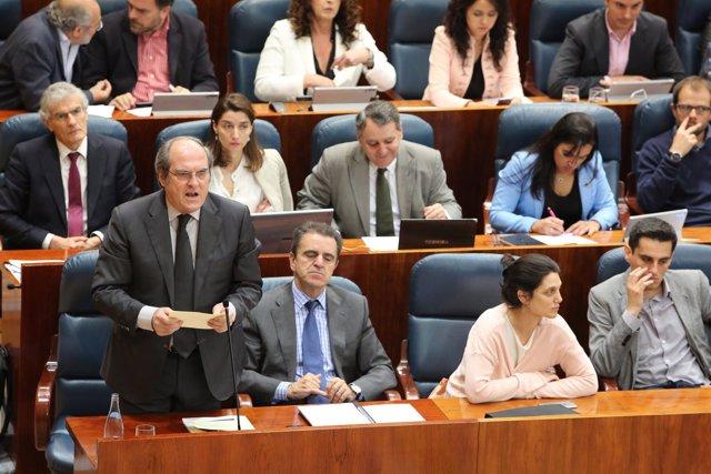 Ángel Gabilondo, portavoz del PSOE en la Asamblea de Madrid