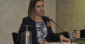 Herrero (PAR) propone subvencionar la Educación Infantil de 0 a 3 años