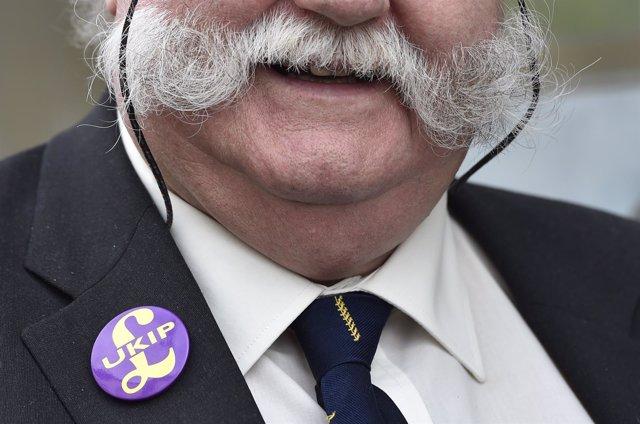 Simpatizante del partido populista euroescéptico UKIP